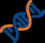 Votre ADN prend sa source dans votre vision sur le long terme